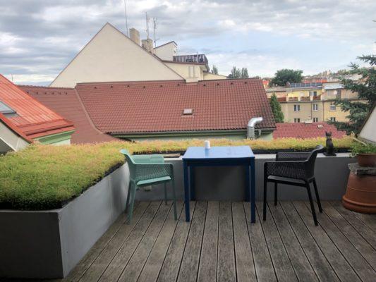 Zelená střecha - ECOSEDUM PACK