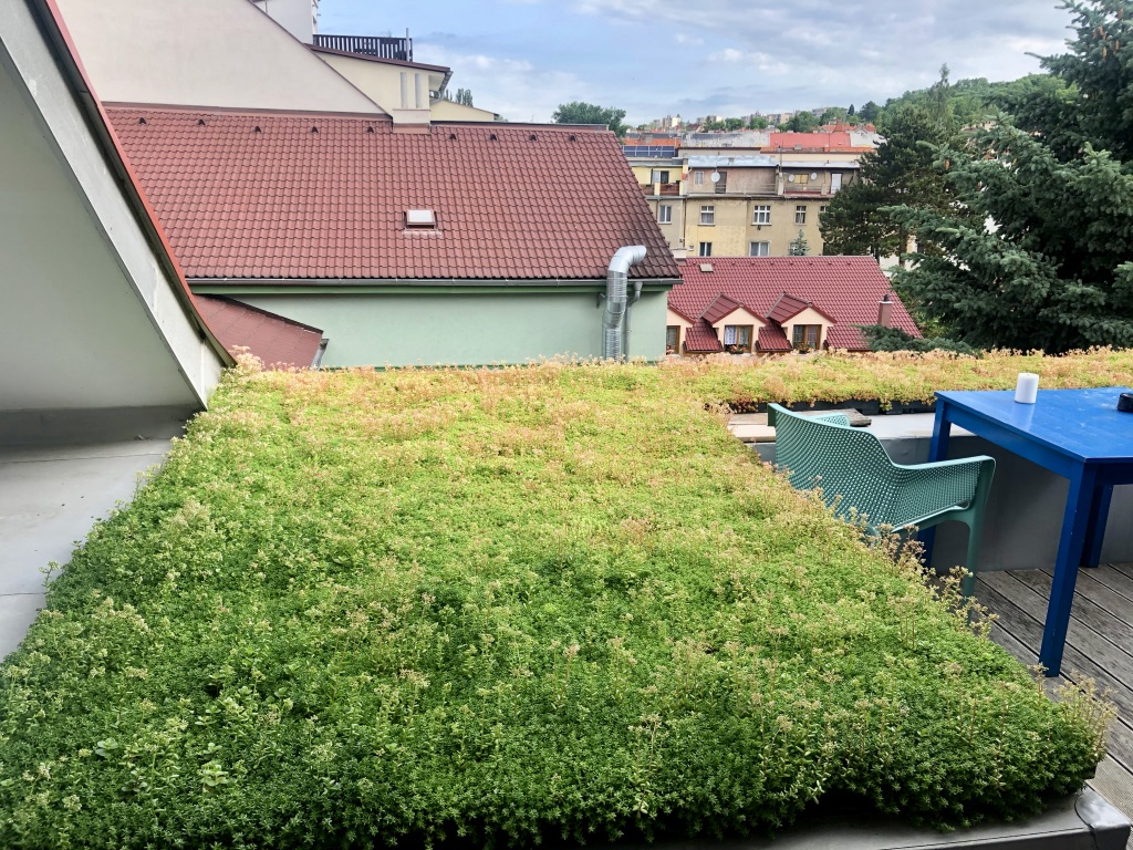 ECOSEDUM PACK - zelená střecha